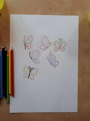 motýliky